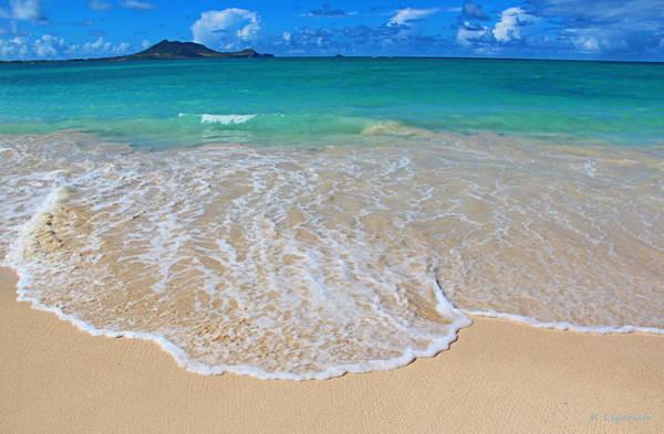Oahu Photograph - Tropical Hawaiian Shore by Kerri Ligatich