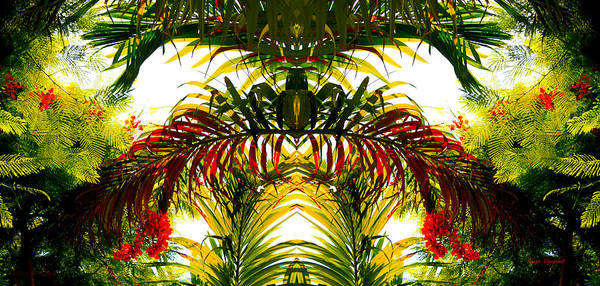 Photograph - Tropical Kaleidoscope by Susan Vineyard