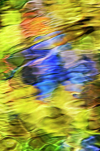 Photograph - Tropical Mosaic Abstract Art by Christina Rollo