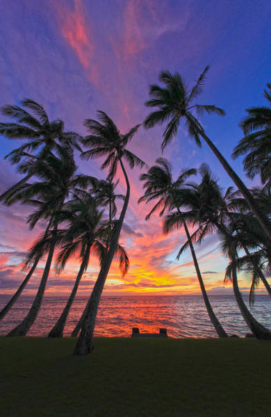 Kihei Photograph - Tropical Nights by James Roemmling