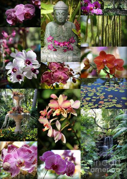 Photograph - Tropical Paradise by Carol Groenen