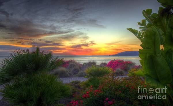 Photograph - Tropical Paradise Sunset by Mathias
