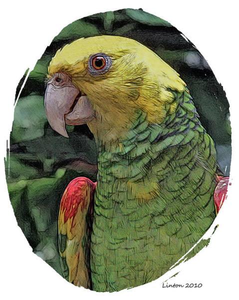 Digital Art - Tropical Parrot 2 by Larry Linton