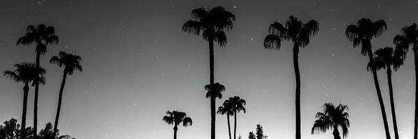 Photograph - Tropical Peaceful Starry Night Panorama In Black And White by James BO Insogna