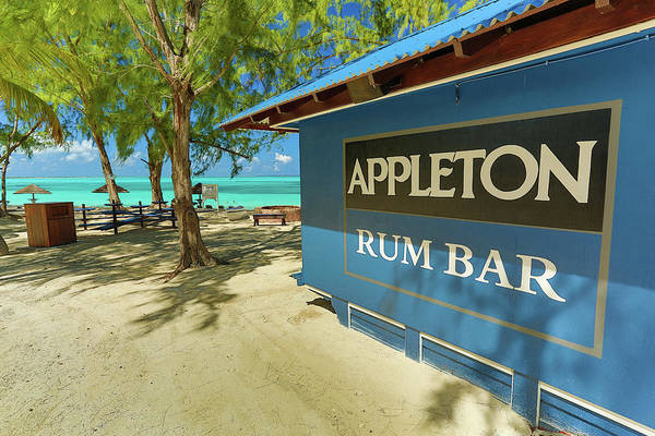 Tropical Rum Bar Art Print