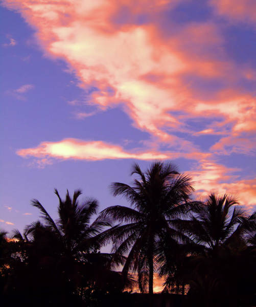 Photograph - Tropical Sunrise by Newwwman