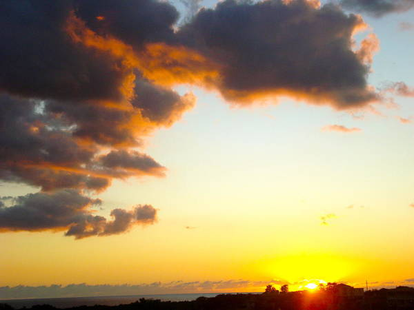 Photograph - Tropical Sunset by Felix Zapata