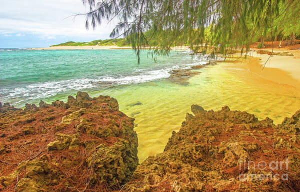 Mahaulepu Beach Photograph - Tropical Textures by Kris Hiemstra