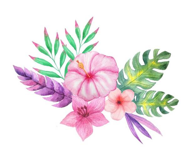 Hibiscus Flower Painting - Tropical Watercolor Bouquet 1 by Elaine Plesser