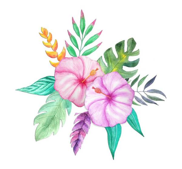 Hibiscus Flower Painting - Tropical Watercolor Bouquet 78 by Elaine Plesser