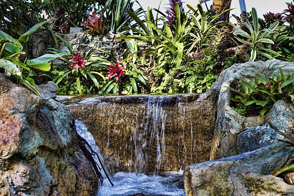 Okc Photograph - Tropical Waterfall by Ricky Barnard