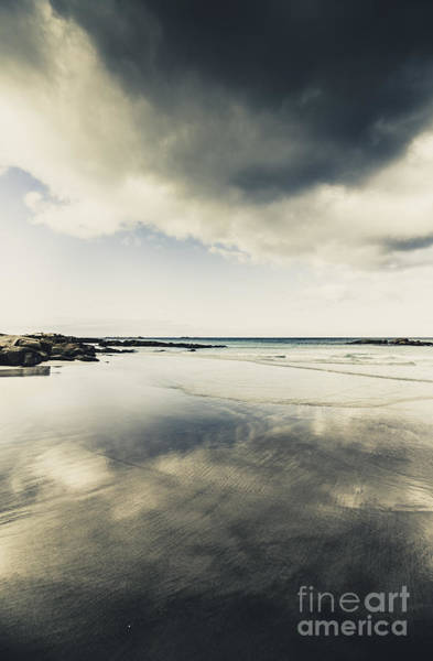 Humid Photograph - Trouble In Paradise by Jorgo Photography - Wall Art Gallery