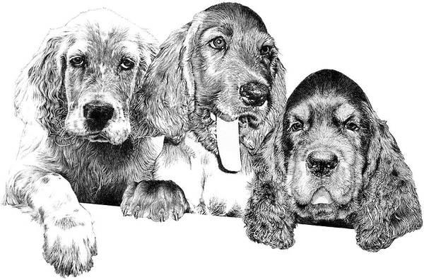 Trio Drawing - Trouble by Carole Raschella