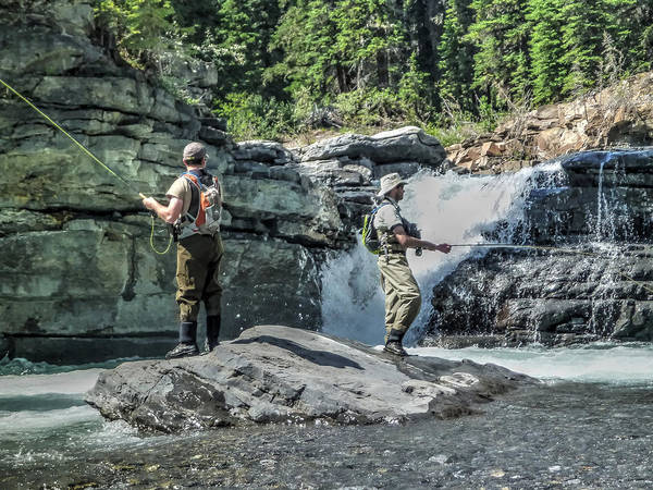Photograph - Trout Below The Falls by Philip Rispin