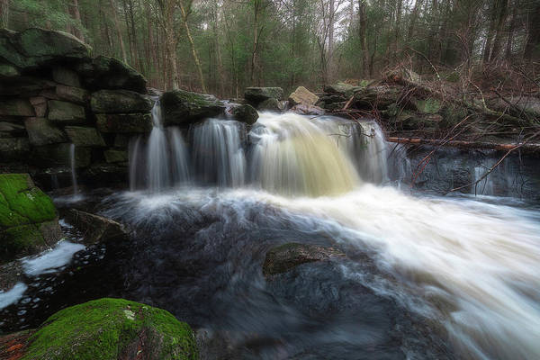 Photograph - Trout Brook Overflow by Brian Hale