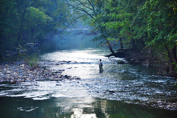 Trout Stream Photograph - Trout Fishing In America by Bill Cannon