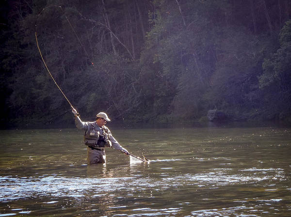 Photograph - Trout On The Little Red by Philip Rispin