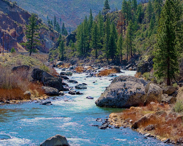 Photograph - Truckee River Floristine by William Havle