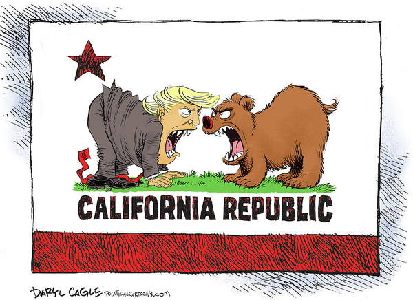 Drawing - Trump And California Face Off by Daryl Cagle