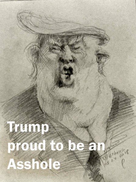 Wall Art - Drawing - Trump The Imbecile by Ylli Haruni