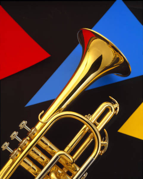 Trumpet Photograph - Trumpet And Triangles by Douglas Pulsipher