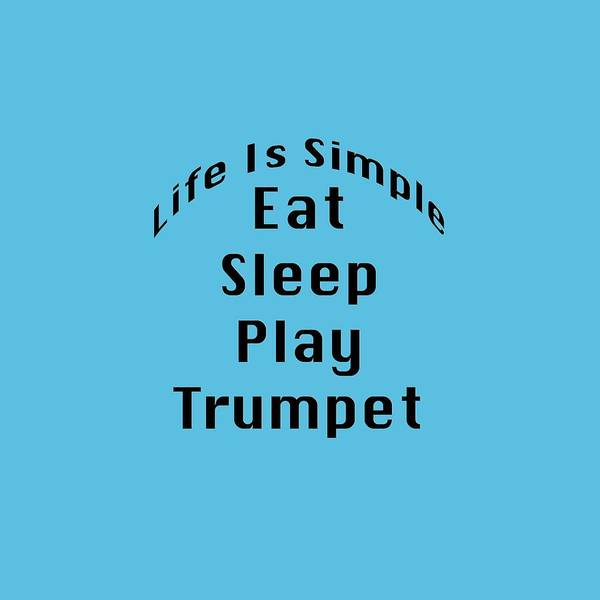 Photograph - Trumpet Eat Sleep Play Music 5504.02 by M K Miller