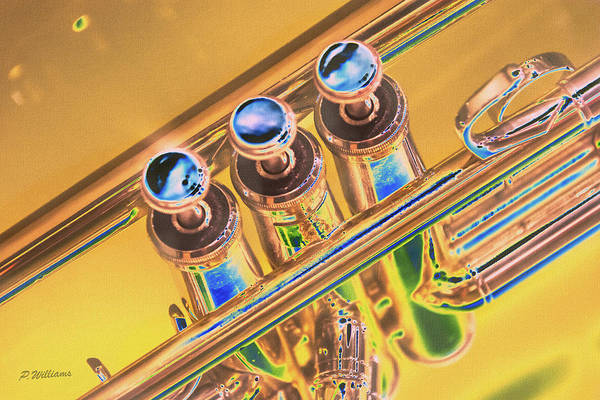 Play Music Digital Art - Trumpet Keys by Pamela Williams