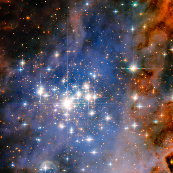 Wall Art - Photograph - Trumpler 14 Star Cluster by Jennifer Rondinelli Reilly - Fine Art Photography
