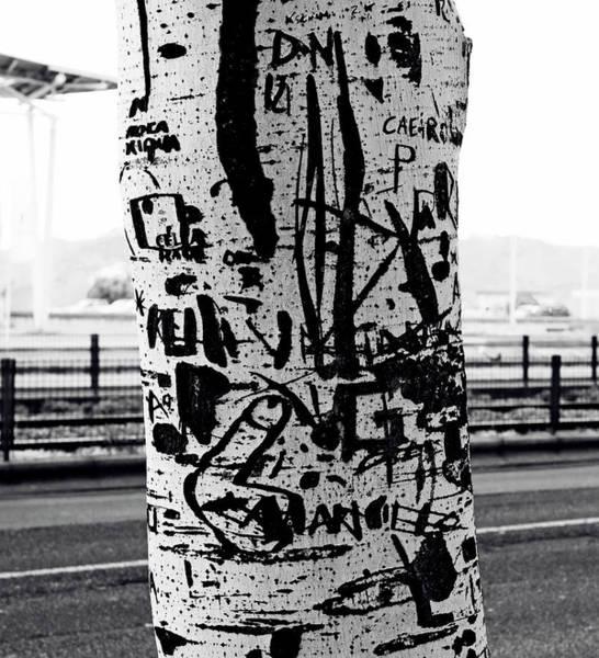 Photograph - Trunk Art Lisbon by Lorraine Devon Wilke