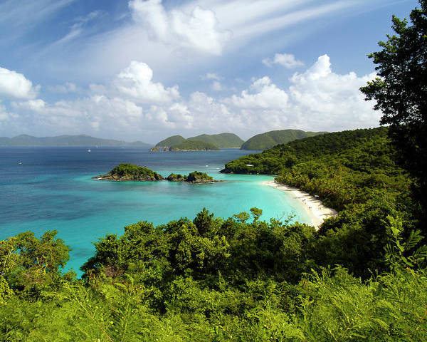 Photograph - Trunk Bay 3 by Pauline Walsh Jacobson