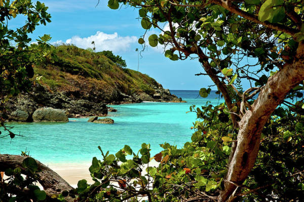 Photograph - Trunk Bay Island  by Harry Spitz