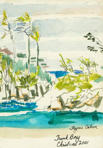 Us Virgin Islands Painting - Trunk Bay by Thyrsie Cahoon