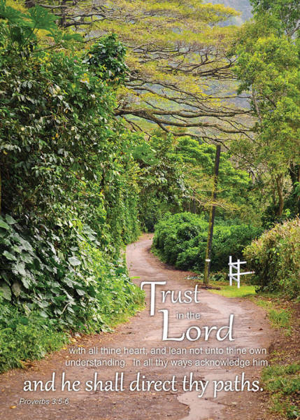 Photograph - Trust In The Lord by Denise Bird