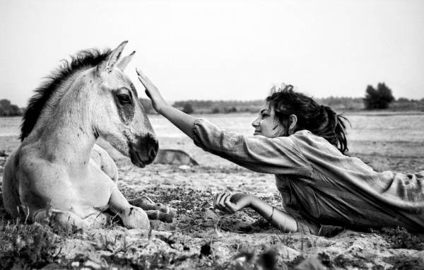White Horse Photograph - Trustful Friendship  by Justyna Lorenc