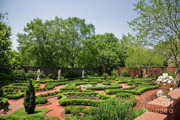 Photograph - Tryon Palace Gardens by Jill Lang