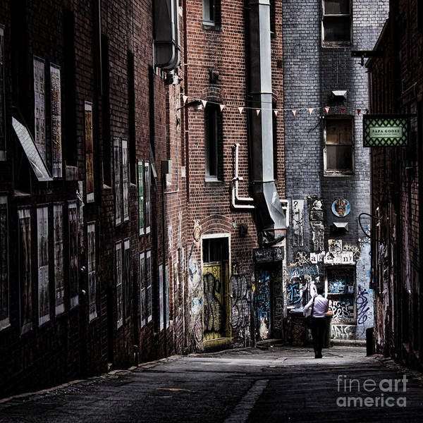 Wall Art - Photograph - Tryst by Andrew Paranavitana