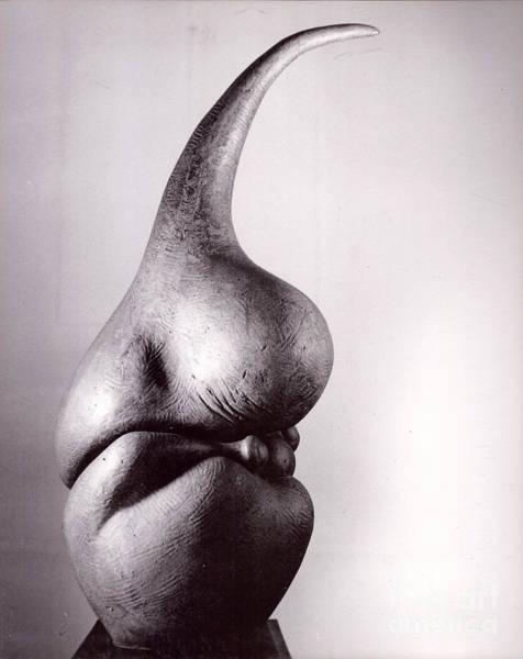 Sculpture - Tuber Form II by Robert F Battles