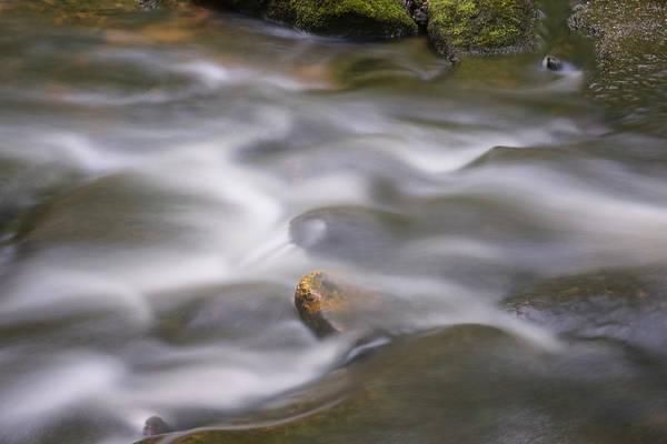 Photograph - Tucker Falls Stream by Tom Singleton