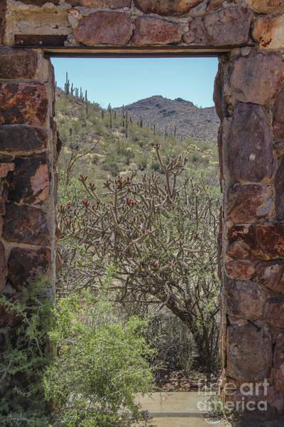 Photograph - Tucson Desert Doorway by Jemmy Archer