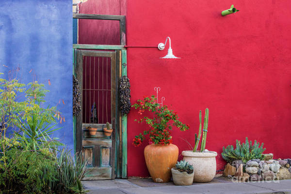 Photograph - Colorful Historic Tucson Door Architecture by Gary Whitton