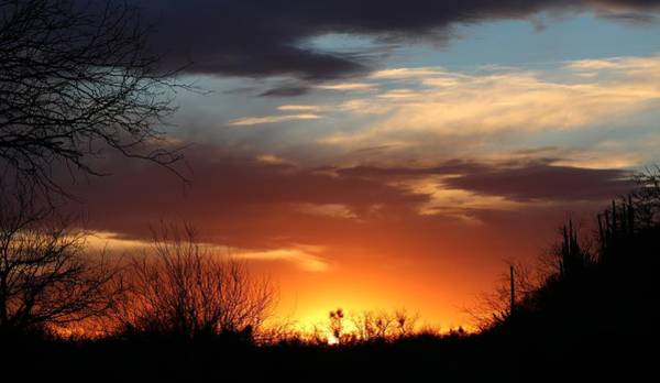 Photograph - Tucson Sunset  by Christy Pooschke