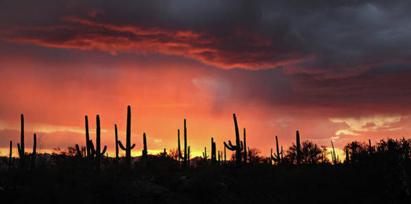 Photograph - Tucson Sunset With Rain by Jean Clark