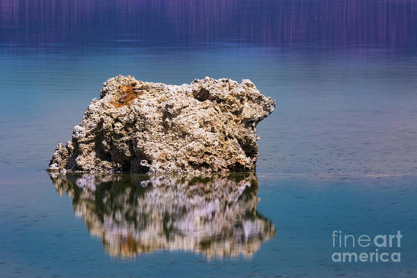 Photograph - Tuffa by Anthony Bonafede