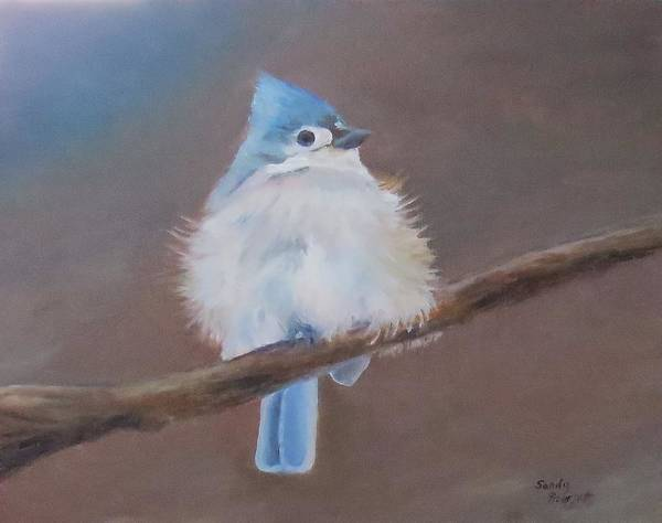 Titmouse Painting - Tufted Titmouse by Sandra Bourret