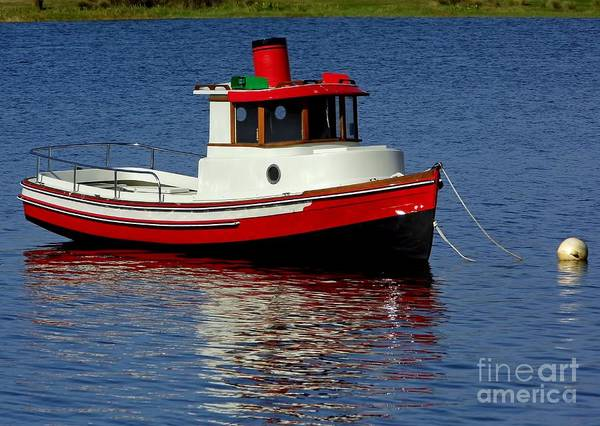 Photograph - Tug On Lake Sumter by D Hackett