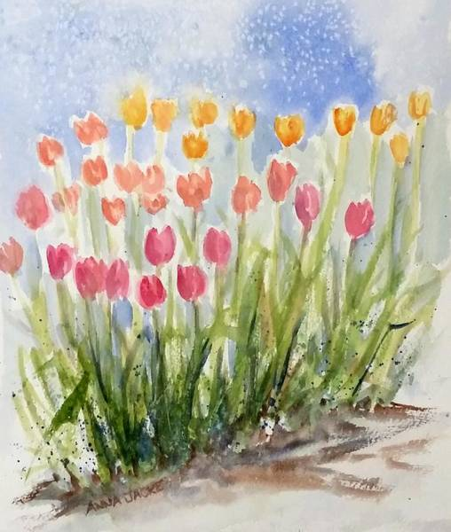 Painting - Tulip Abunda by Anna Jacke