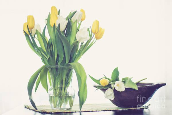 Treen Photograph - Tulip Art by Cheryl Baxter
