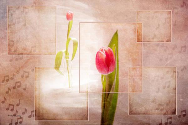 Photograph - Tulip Dream by Randi Grace Nilsberg