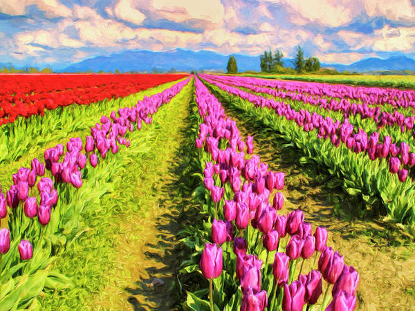 Painting - Tulip Farm by Dominic Piperata