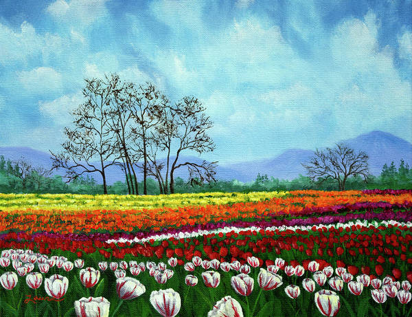 Wall Art - Painting - Tulip Fields Under White Fluffy Clouds by Laura Iverson